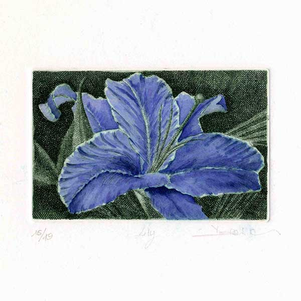 Deianira, calcografia-Lily