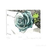 Deianira, calcografia-Rose