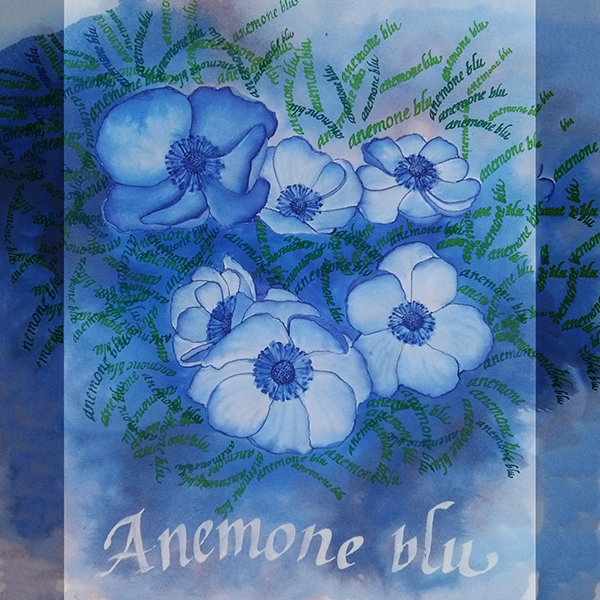 anemone-blu