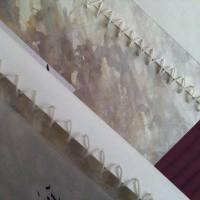Deianira, libro di calligrafia realizzato a mano