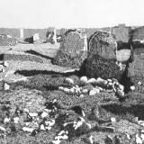 Deianira-Obelischi